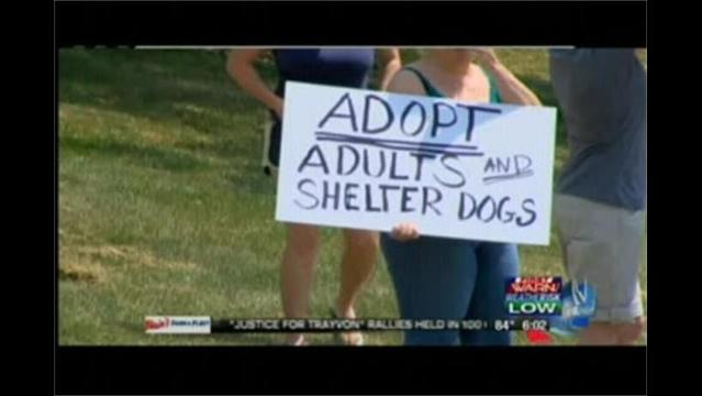 Local Animal Rights Group Protest Against Puppy Mills