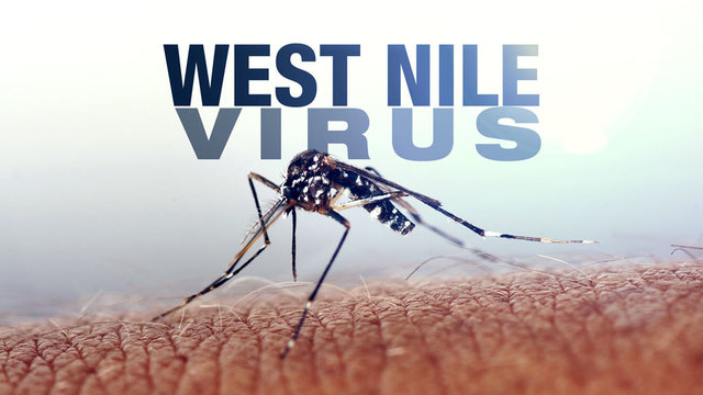 West Nile virus found in county