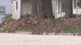 Loves Park asks residents to keep property clean, or face code violations
